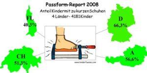 Passform_Report_2008